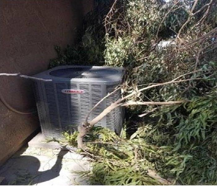fallen tree on side of house on A/C unit