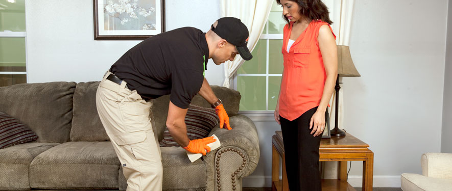 Temecula, CA carpet upholstery cleaning
